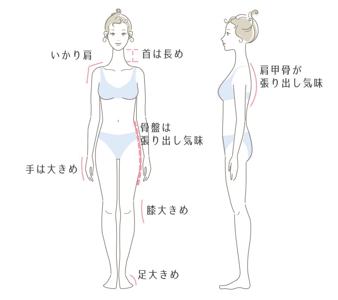 骨格ナチュラルタイプの特徴