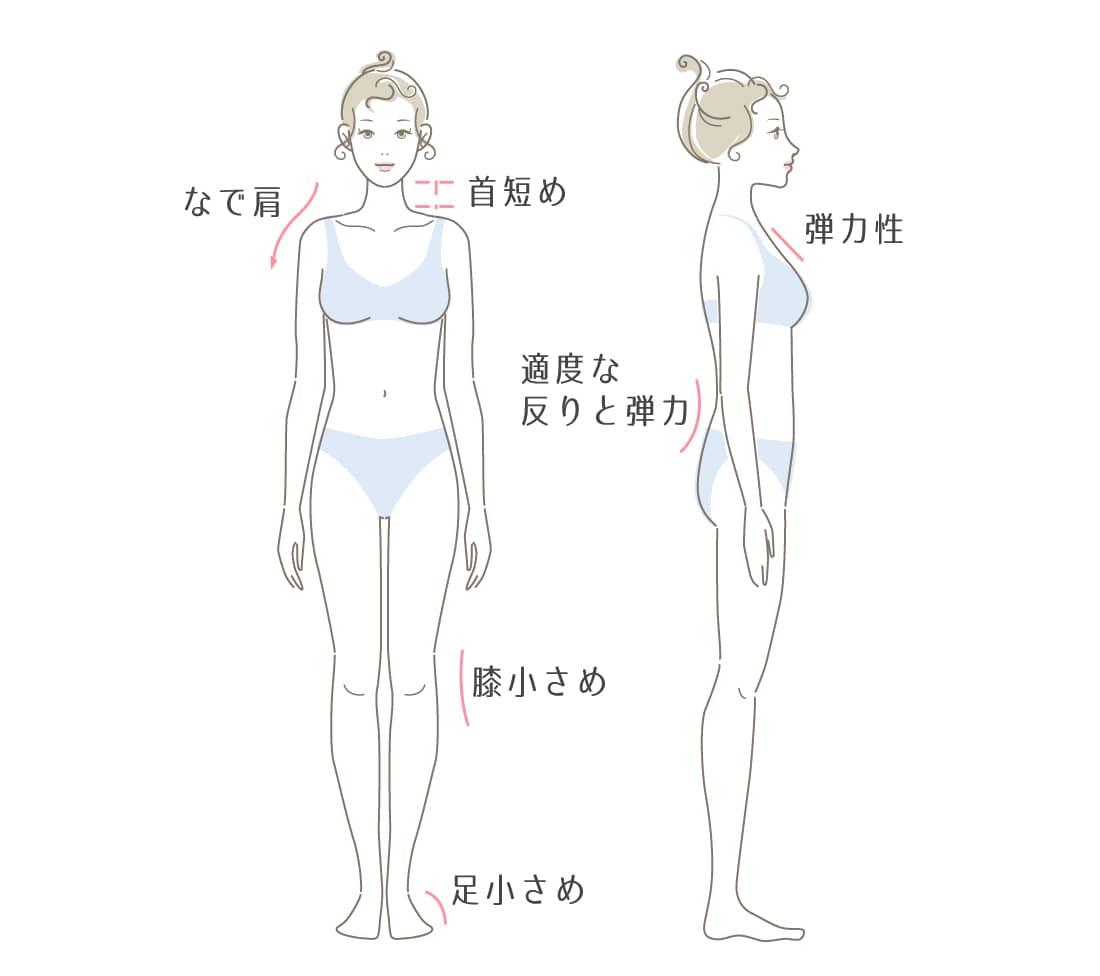 骨格ストレートタイプの特徴